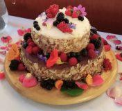 hz torte